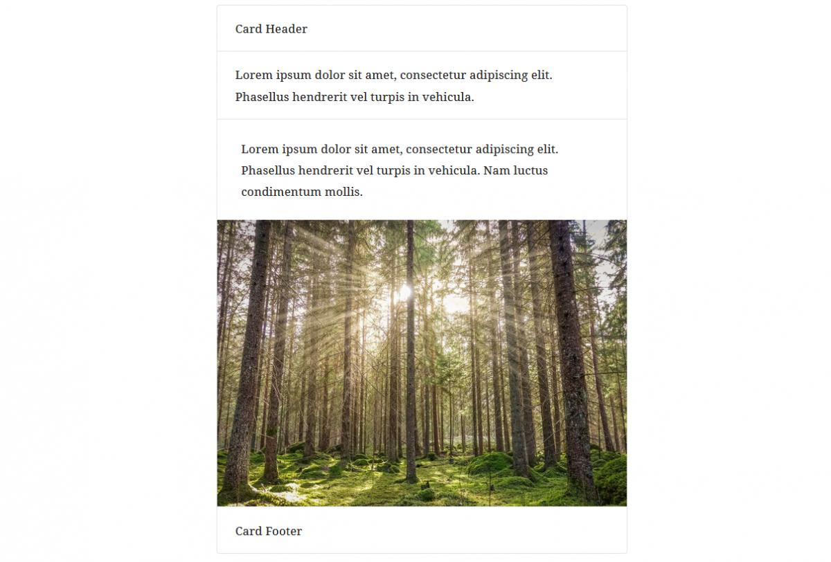 """A screenshot of the WordPress Gutenberg component """"Card""""."""